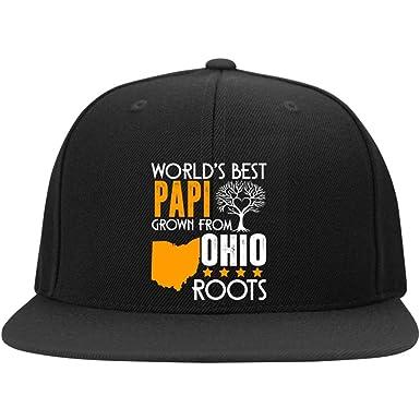 0cb5fb5ffea World s Best Papi Cap