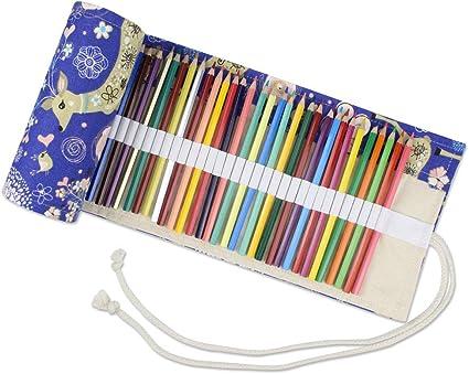 Estuche de gran capacidad para 72 lápices de colores, estuche organizador portátil para lápices de colores, ideal para libros de colorear para niños adultos (no incluye lápiz), color XIAOLU: Amazon.es: Oficina y