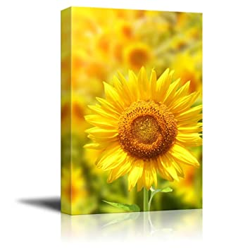 Amazon.com: Canvas Prints Wall Art - Yellow Sunflowers and Bright ...