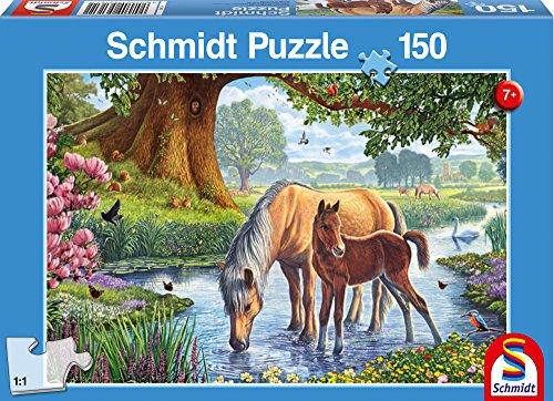 - Schmidt Spiele