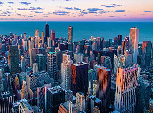 (Adult Jigsaw Puzzle View City of Chicago Skyscrapers Skyline)