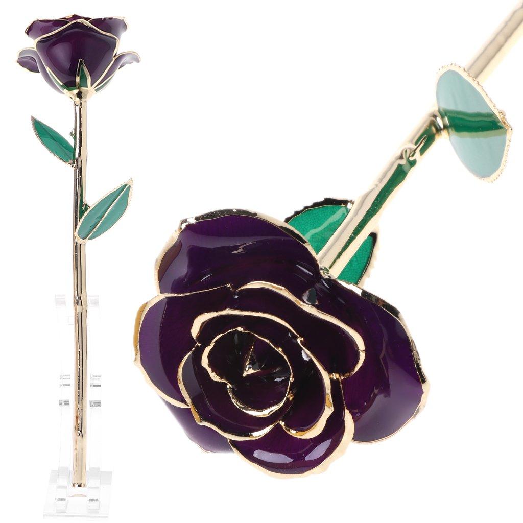 Richi 24K Gold Rose Real Flower Love Forever Women Gift (Purple)