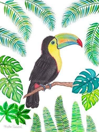 Amazon.com: Toucan art print. Tropical bird art. Toucan