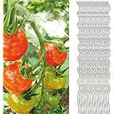 20x Tomatenspiralstab 180cm voll verzinkt Tomatenstab Tomaten Ranke Pflanzstab Stahl Profi Qualität ( 1-50 Stück ) Tomatenspiralstäbe