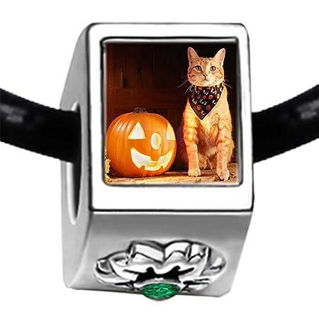 Cute Gato Disfraz de Halloween calabaza Verde esmeralda cristal ...