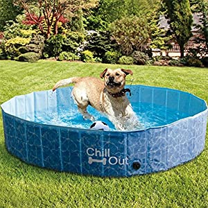 All for Paws Outdoor Dog Swimming Pool