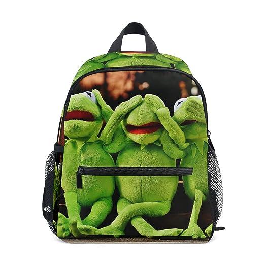 Mochilas para niños con diseño de rana verde: Amazon.es: Hogar