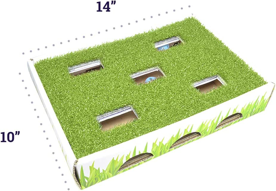 Grass Patch Hunting and Play Box Cat Ball Toy by Petstages : Pet Supplies