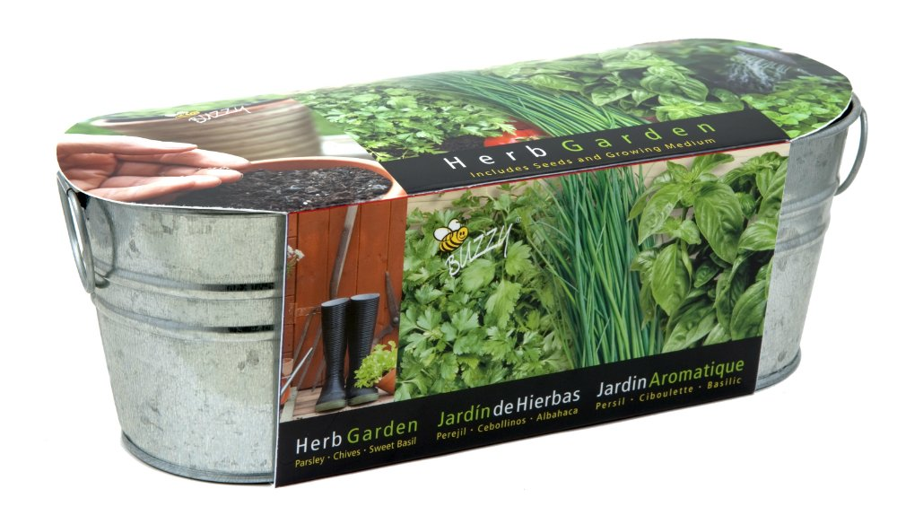 Amazon.com : BUZZY Herb Windowsill Kit : Plant Germination Kits : Garden U0026  Outdoor