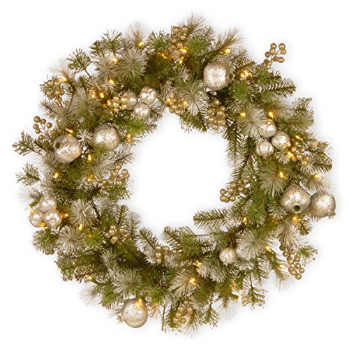 National Tree 24 Inch Glittery Pomegranate Pine Wreath with Sliver Pomegranate, Champagne Berries, White Frosted Tips and 50 Battery Operated Warm White LED Lights with Timer -