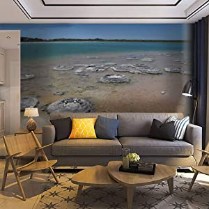 Wallpaper Wall Mural stromatolites Shark Bay World Heritage Area Undersea World Stock Self Adhesive Removable Peel & Stick Wall Decor Home Craft Wall Decal Wall Poster Sticker for Living Room