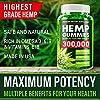 Hemp Gummies 300000 Enhancer Vitamins 1