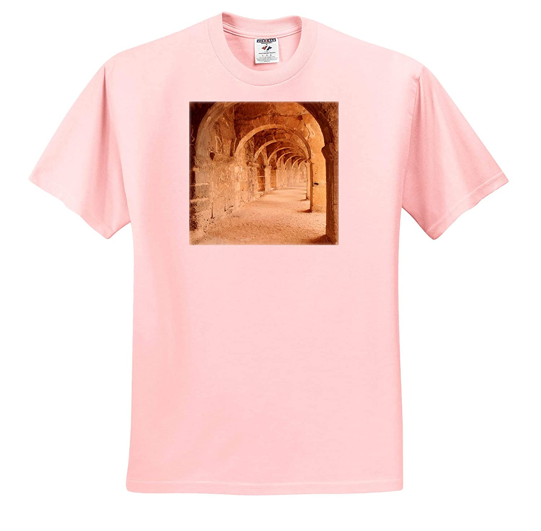 2nd Century Roman Theatre Aspendos Turkey 3dRose Danita Delimont Turkey ts/_312866 - Adult T-Shirt XL Archways