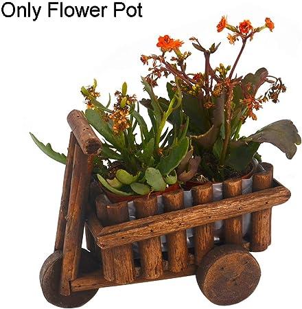 Alicer - Maceta de Madera para decoración de jardín o balcón: Amazon.es: Hogar