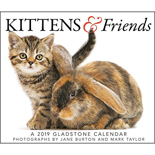 2019 Kittens & Friends Desk Calendar (Cat Desk Calendar)