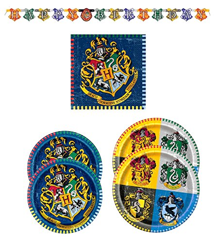 Ravenclaw Student Costume (Harry Potter Hogwarts Crest Plates and Napkins for 16 Guest and Birthday Banner)