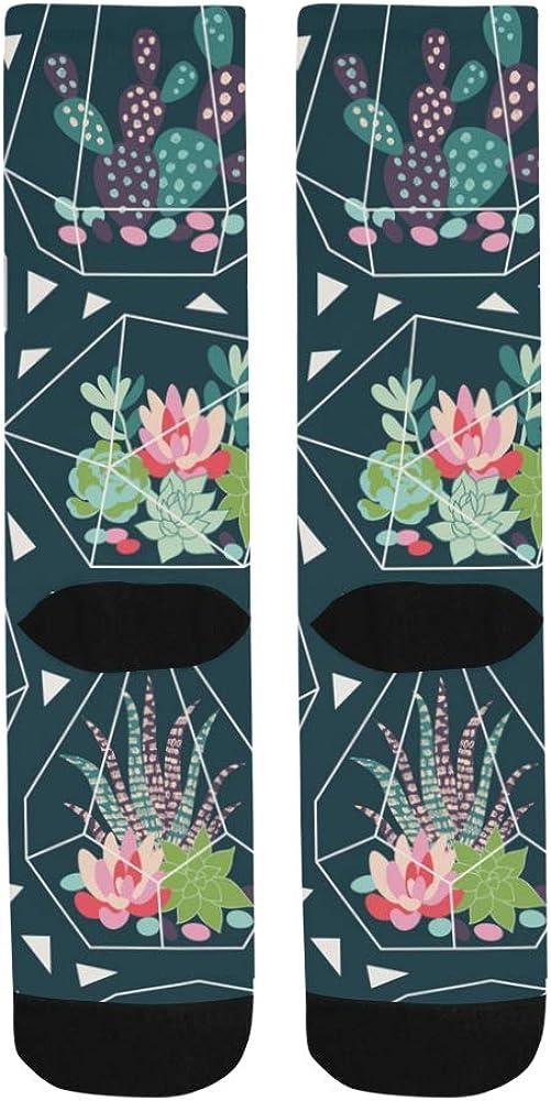 Succulent Cactuses In Scandinavian Stylish Crazy Dress Troser Sock For bott