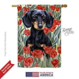 Cheap Breeze Decor PT-H-110080-IP Dachshund in Tulips House Flag, 28″ x 40″, Multicolor