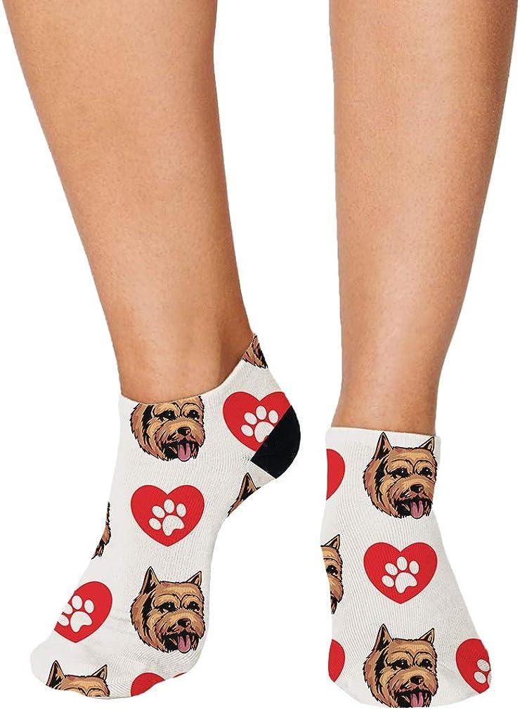 Norwich Terrier Dog Heart Paws Pattern Men-Women Adult Ankle Socks