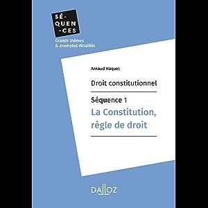 Droit constitutionnel - Séquence 1. La constitution, règle de droit: En 11 thèmes (Séquences - Droit constitutionnel…