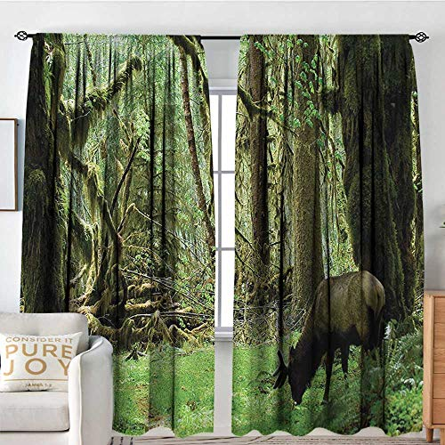 NUOMANAN Blackout Curtains Rainforest,Roosevelt Elk in Rainforest Wildlife National Park Washington Antlers Theme,Green Brown,for Bedroom&Kitchen&Living Room 54