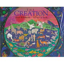 Creation: A Pop-Up Book