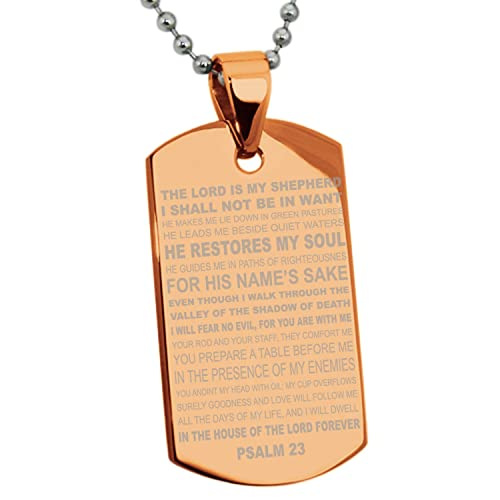 Chapado en Oro Rosa Acero Inoxidable Salmos 23 Versículo de ...