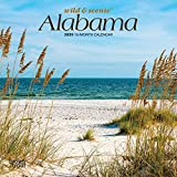 Alabama, Wild & Scenic 2020 7 x 7 Inch Monthly Mini Wall Calendar, USA United States of America Southeast State Nature