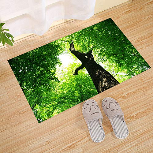 JANNINSE Four Seasons Theme Summer Green Lush Leaves Brown Branches Forest Stripes Large Door Mats, Natural Coconut Wood Non-Slip Tree Floor Entrance Door Mats Indoor/Outdoor -