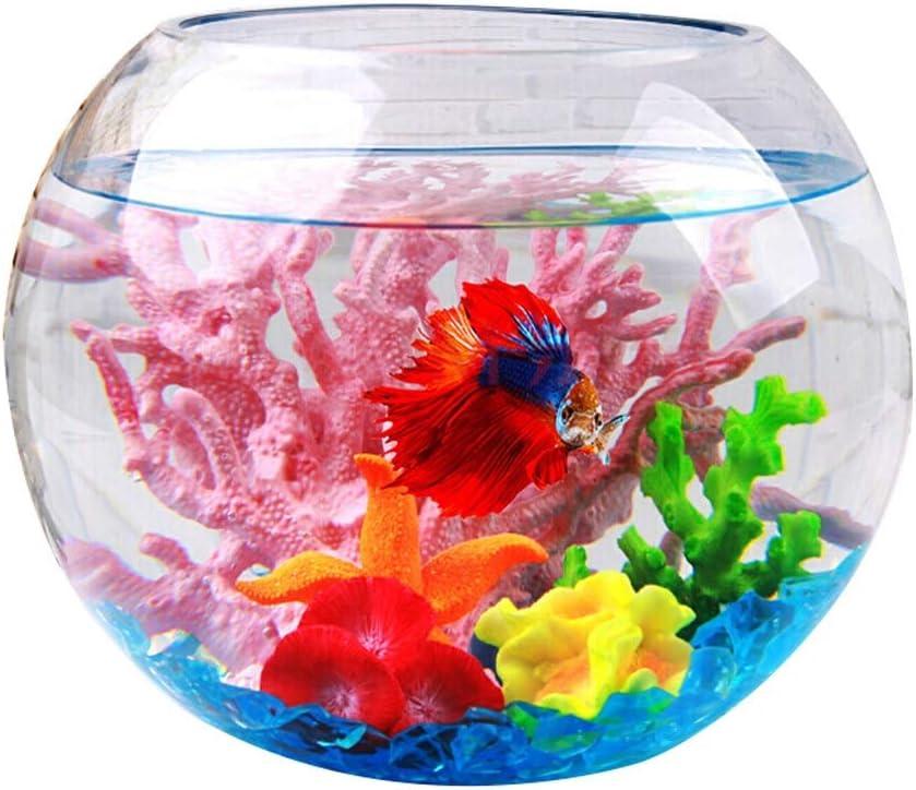 Xuejuanshop—Peceras Tanque de Peces de Cristal Creativo Tanque Redondo esférico Goldfish Bowl Decoración de Escritorio Tanque de Peces Transparente (tamaño : M)