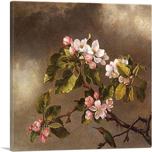 ARTCANVAS Hummingbird and Apple Blossoms 1875 Canvas Art Print by Martin Johnson Heade- 18