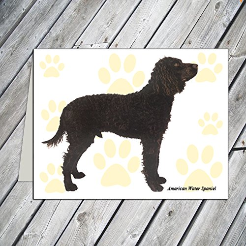 American Water Spaniel - Note Cards