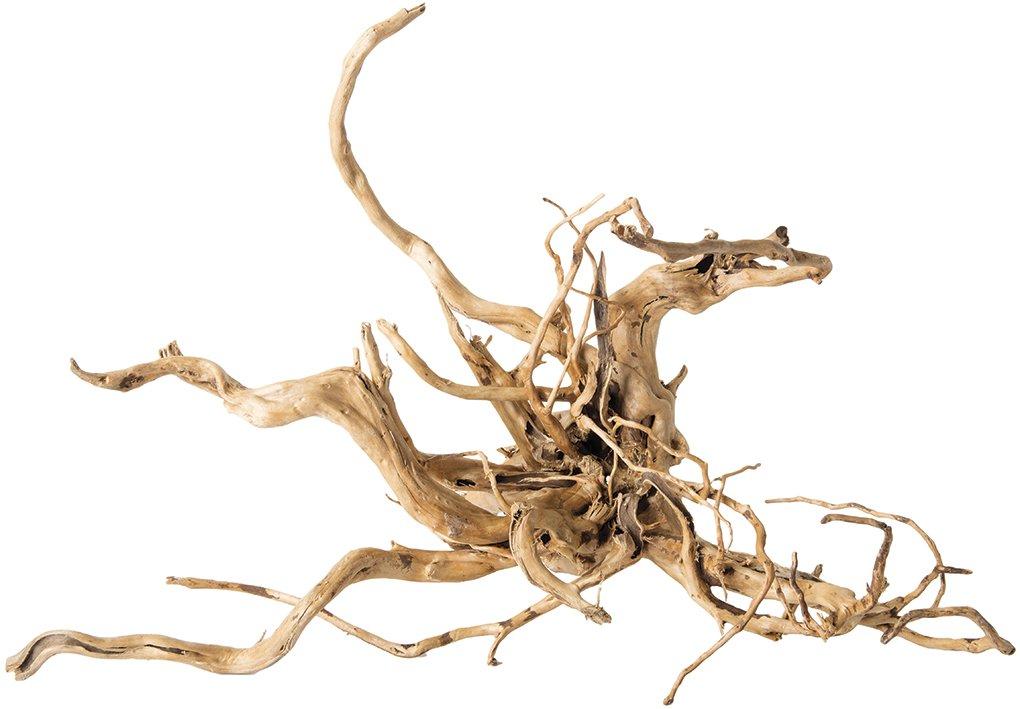 Galapagos 05319 Spider Wood, Natural, 12-24''