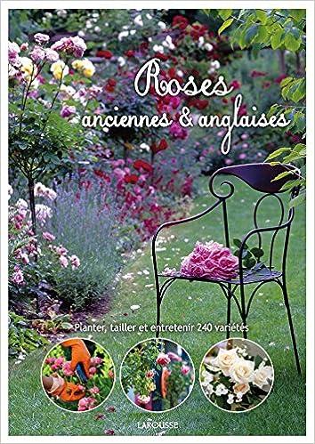 En ligne téléchargement Roses anglaises et anciennes pdf epub