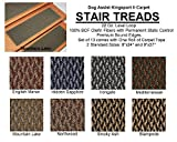 8''x24'' Dog Assist Carpet Stair Treads - Kingsport II - Set of 13 w/ 1 Roll Carpet Tape (Stampede)