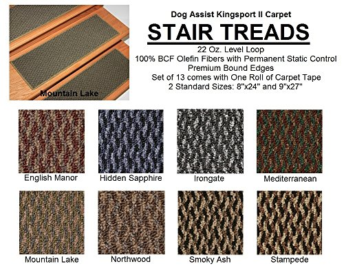 8''x24'' Dog Assist Carpet Stair Treads - Kingsport II - Set of 13 w/ 1 Roll Carpet Tape (Stampede) by Koeckritz Rugs