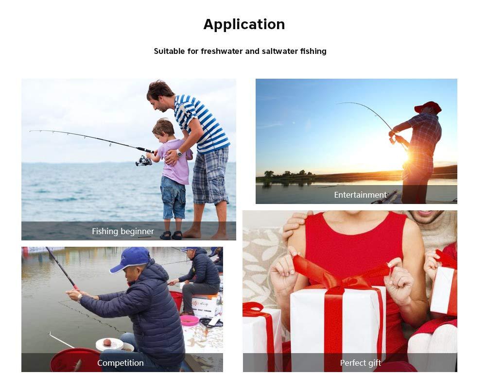 Amazon.com : Decolla Fishing Reel Bait Casting 6 + 1BB 6.3:1 ...
