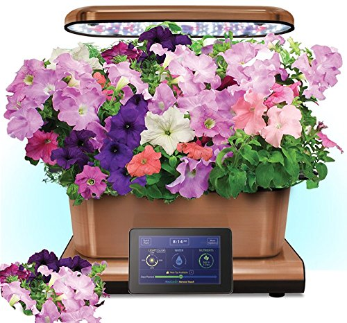 Harvest Touch by Aerogarden Copper Finish Indoor Garden with Cascading Petunia Kit (See other available colors and options) by AeroGrow