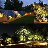 LCARED Outdoor Landscape Lighting 10W,120V
