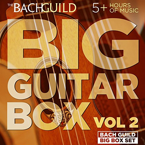 Big Guitar Box 2