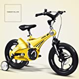 Children's Bicycle Shock Absorber Mountain Bike Boy Road Riding Stroller Balance Car Girl Bicycle Learning (Color…