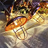 AceList 20-LED Metal String Lights Battery Operated, Party Festival Décor Balcony Dining Room - Lantern
