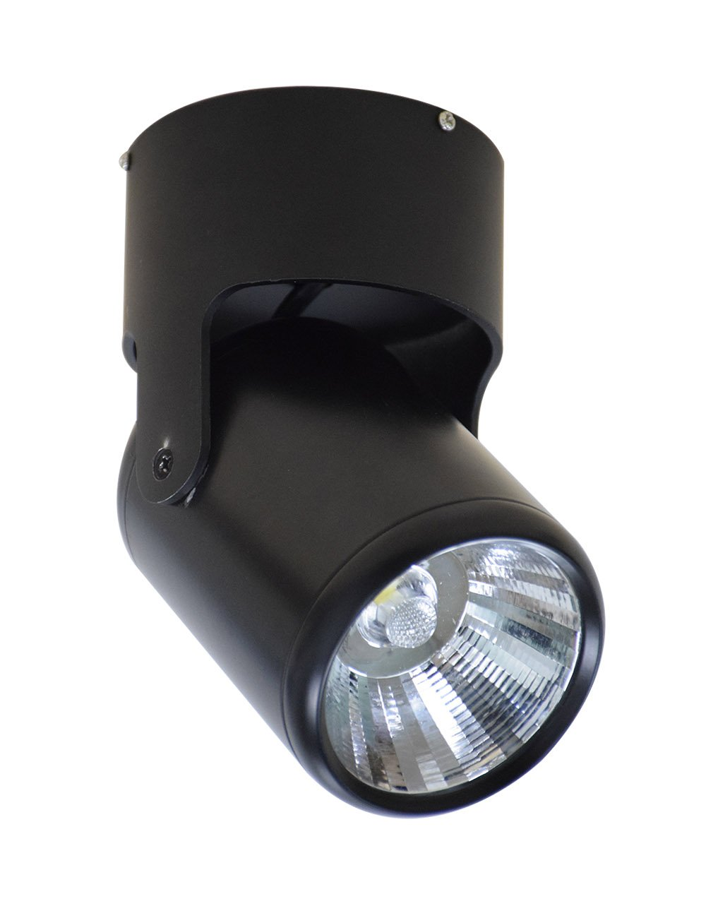 LED Indoor Ceiling Spotlight fixture Surface Mounted Accent Spot light Adjustable Wall Spot lighting,12W Black Aluminum Track Light Cool White, Not Dimmable, Not Wireless, AC 110-240V