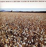 November Cotton Flower