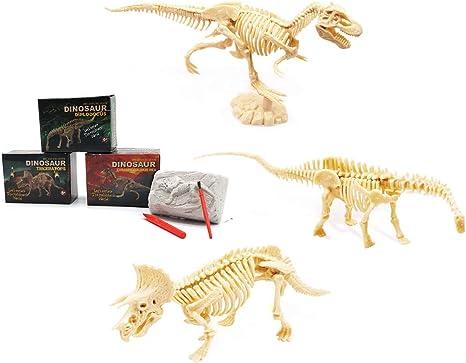 Amazon Com Juguete De Ciencia De Excavación De Esqueleto Fósil De Dinosaurio Para Niños Conjunto De Excavación Kit De Bricolaje T Rex Triceratops Diplodocus Toys Games