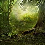 Laeacco Vinyl Thin Backdrop 5X5FT Photography Background Fairytale Enchanted Forest Ancient Tree Hazy Dreamy Woods Scenic Kids Baby Adults Background 1.5(W) x1.5 (H) m Backdrop Photo Studio Props