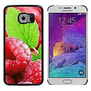Paccase / SLIM PC / Aliminium Casa Carcasa Funda Case Cover - Fruit Fresh Mint - Samsung Galaxy S6 EDGE SM-G925