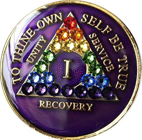 - 1 Year Purple Rainbow Swarovski Crystal Tri-Plate AA Medallion Chip