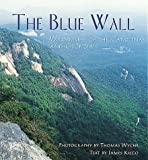 The Blue Wall, Thomas Wyche, 1565791894