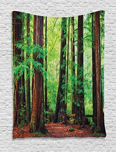 Ambesonne Woodland Tapestry, Redwood Trees Northwest Rain Forest Tropical Scenic Wild Nature Branch, Wall Hanging for Bedroom Living Room Dorm Decor, 60 X 80 , Green Brown